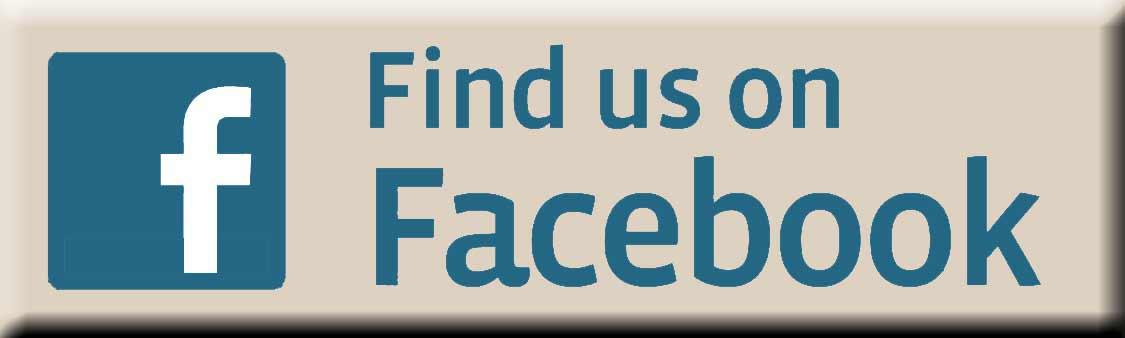 פייסבוק - ציפי פליישר